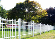 Aluminum Fences in TX