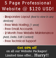 Affordable Web site packages with 40% off!