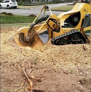MSG STUMP GRINDING SERVICES AT YOUR SERVICE. !!!FREE ESTIMATES!!!