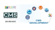 CMS development  Houston